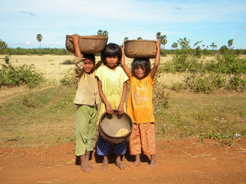 カンボジア奨学生の様子